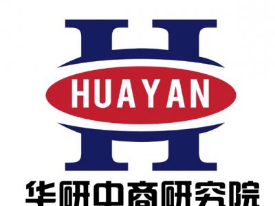 ?中国聚酰胺项目投资可行性研究报告?(2019版)-- 北京华研中商经济信息中心